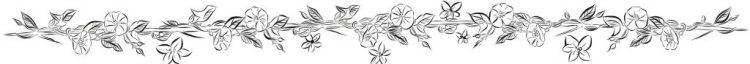 FullBrides Page Bottom Floral